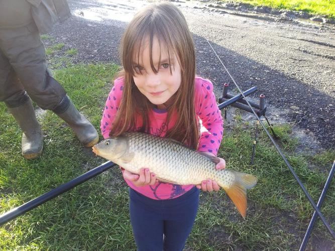 nice carp