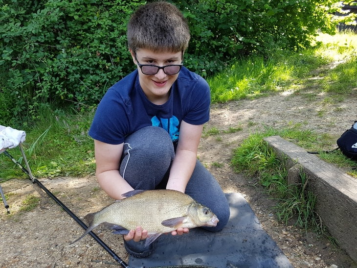 Great Bream on the feeder