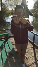 Nice Common Carp