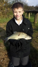 Bream at Lakeside